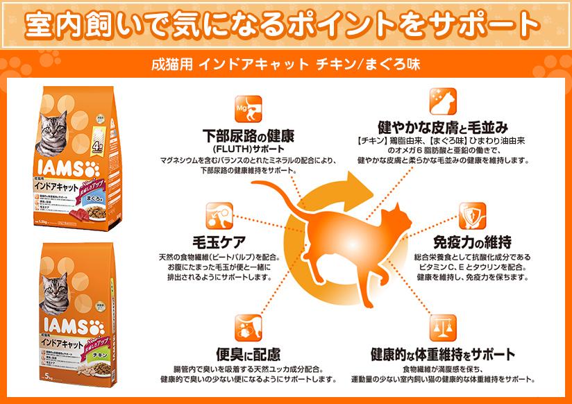 成猫用 インドアキャット チキン/まぐろ味