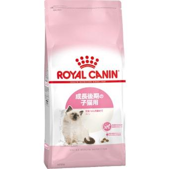 ロイヤルカナン 猫用 キトン 400g/2kg