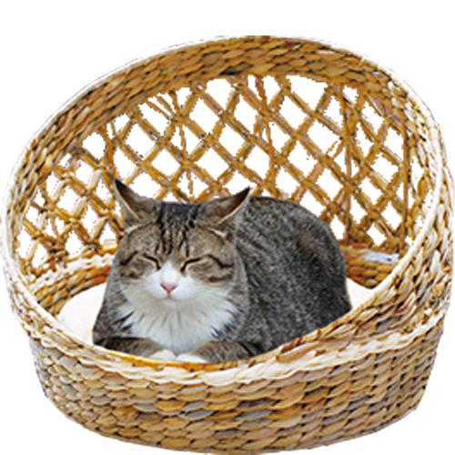 アジアンベッド ブライトリゾート ドーム猫用