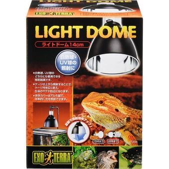 ライトドーム