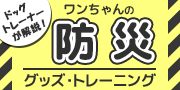 ドッグトレーナーが解説!ワンちゃんの防災グッズ・トレーニング