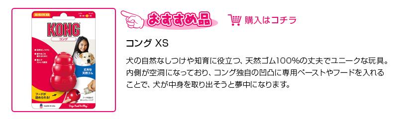コング XS