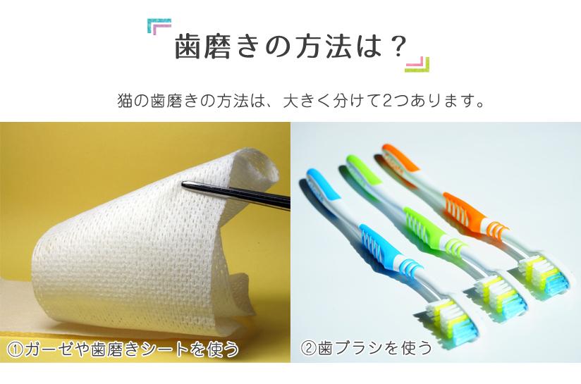 歯磨きの方法は?