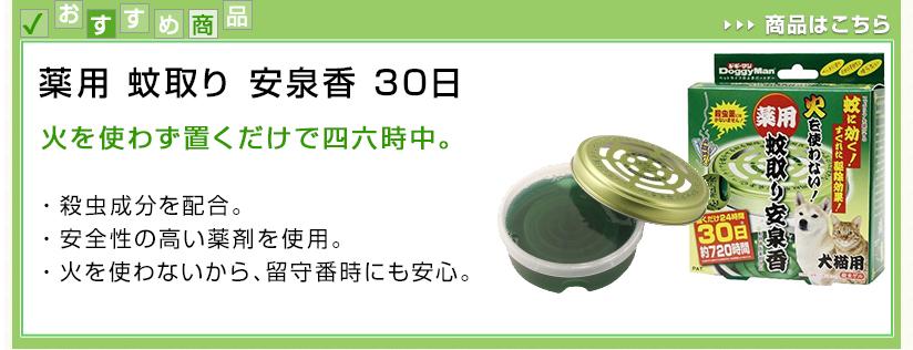 薬用 蚊取り 安泉香 30日