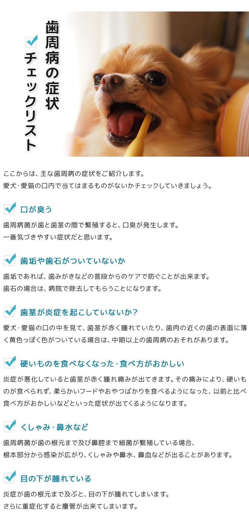 歯周病の症状チェックリスト