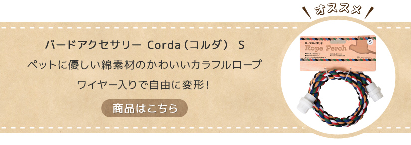 バードアクセサリーコルダS