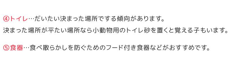 フクロモモンガの飼育に必要なもの(4)トイレ(5)食器