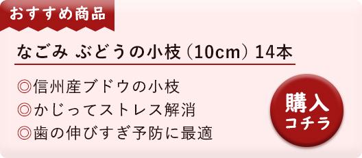 なごみ ぶどうの小枝(10cm)14本
