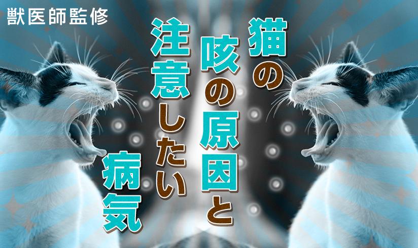 獣医師監修 猫の咳の原因と注意したい病気