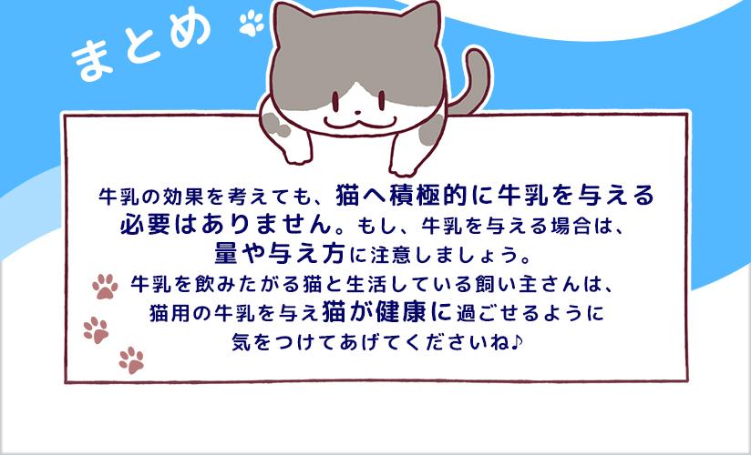 まとめ・猫へ牛乳を与える場合は量や与え方に注意しましょう