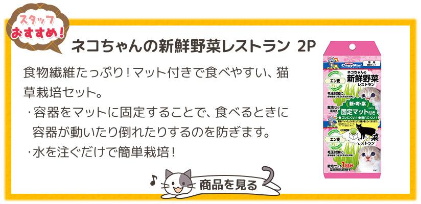 ネコちゃんの新鮮野菜レストラン 2P