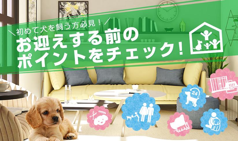 初めて犬を飼う方必見!お迎えする前のポイントをチェック!