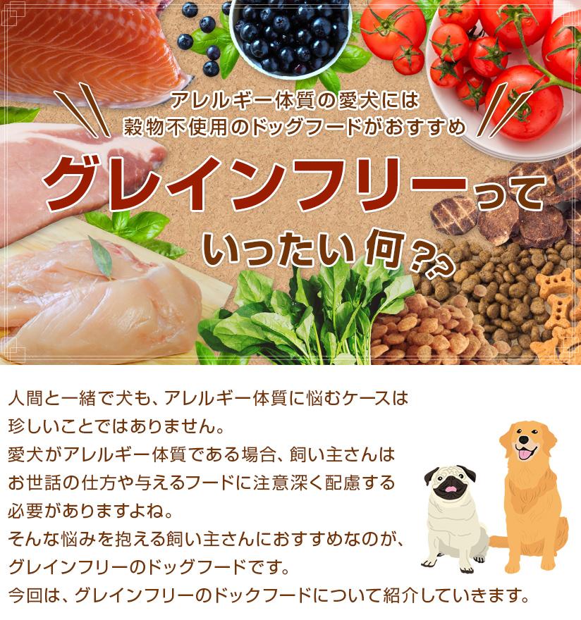 グレインフリーっていったい何?アレルギー体質の愛犬には穀物不使用のドッグフードがおすすめ