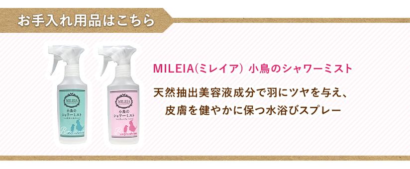 お手入れ用品はこちら→ MILEIA(ミレイア) 小鳥のシャワーミスト