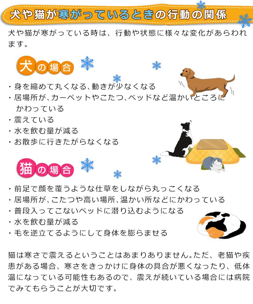 犬や猫が寒がっているときの行動