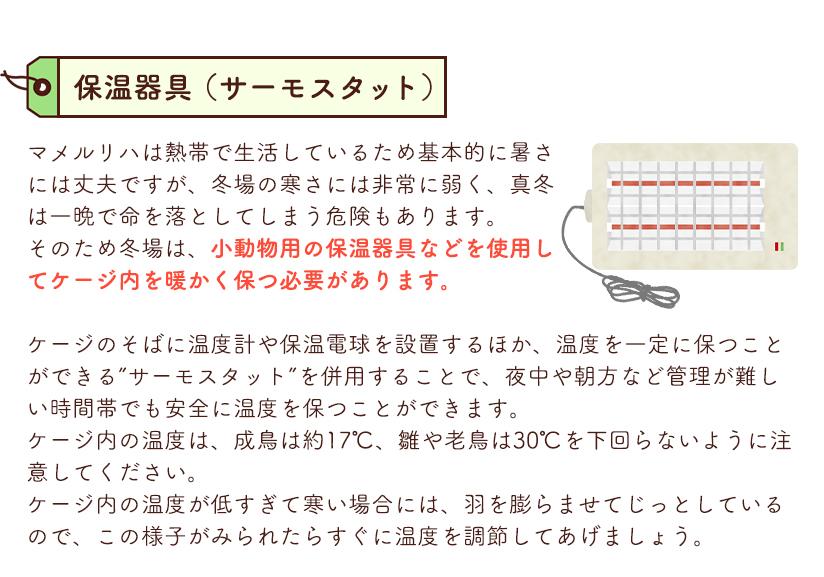 お迎えに必要な飼育グッズ 保温器具(サーモスタット)