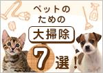 ペットのための大掃除7選