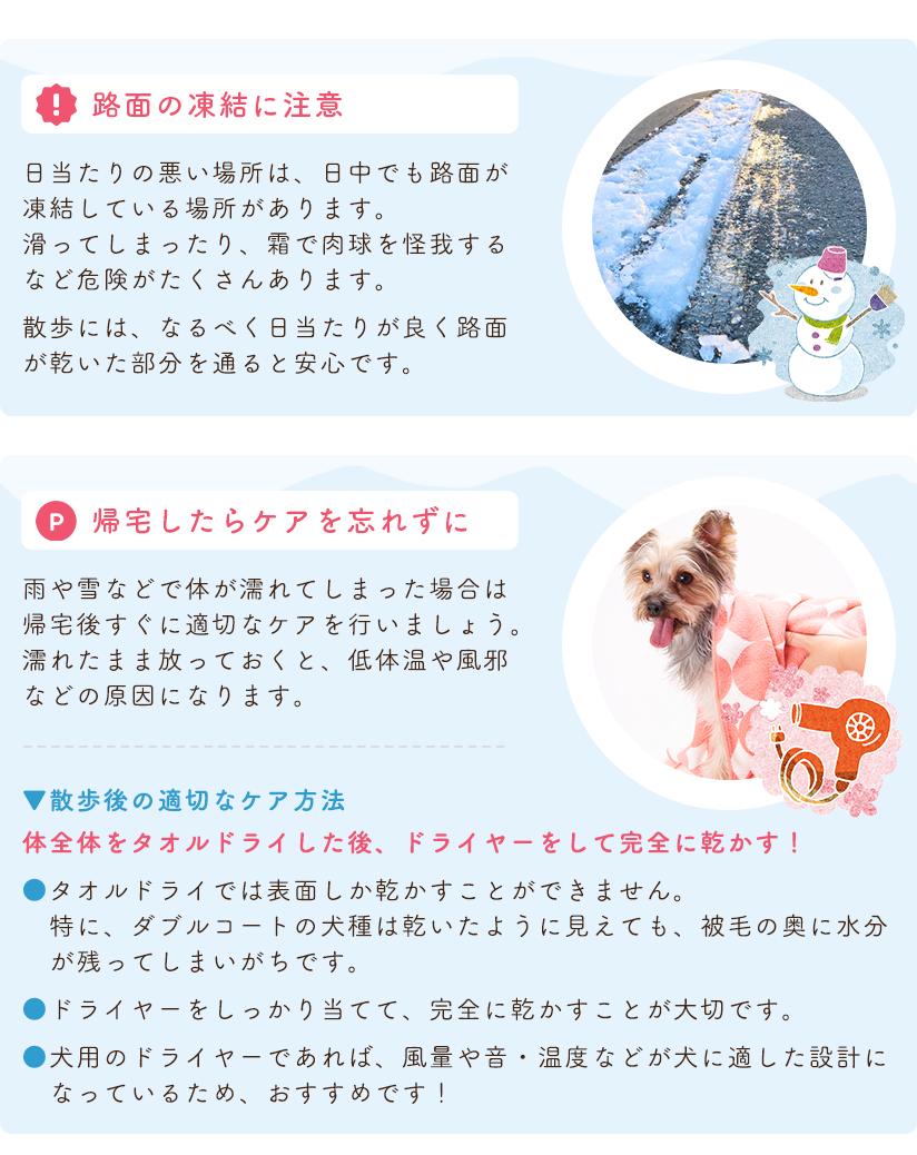 冬の散歩の注意点とポイント 路面の凍結に注意 帰宅したらケアを忘れずに