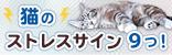 猫のストレスサイン9つ!