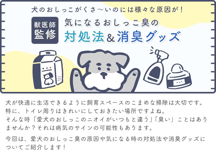 獣医師監修 気になるおしっこ臭の対処法&消臭グッズ