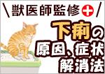 猫の下痢の原因、症状、解消法