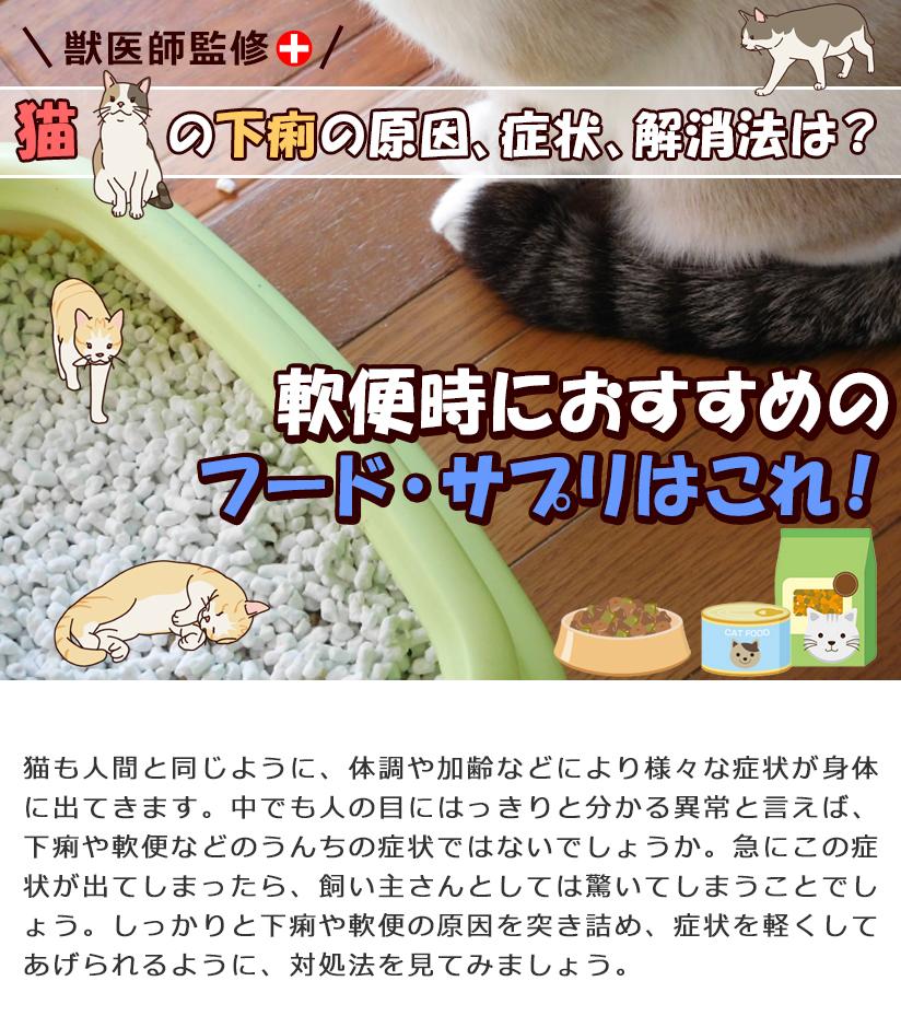 【獣医師監修】猫の下痢の原因、症状、解消法は?軟便時におすすめのフード、サプリはこれ!