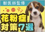 犬の花粉症対策7選