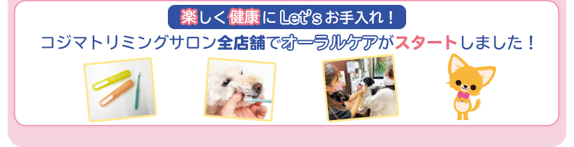 Let'sお手入れ