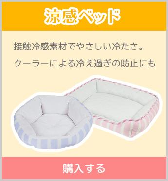 涼感ベッド