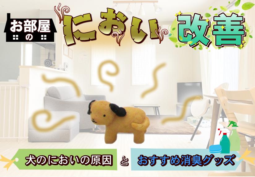 お部屋のにおい改善!犬のにおいの原因とおすすめ消臭グッズ