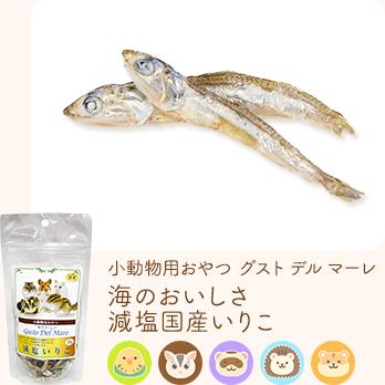 小動物用おやつ グスト デル マーレ 海のおいしさ減塩国産いりこ