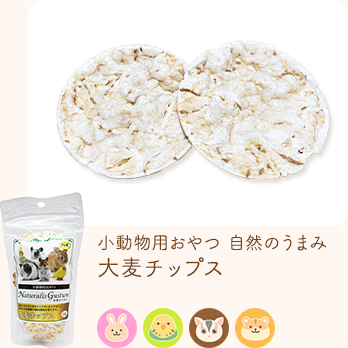 小動物用おやつ 自然のうまみ 大麦チップス