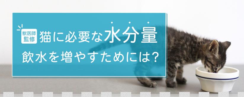 【獣医師監修】猫に必要な水分量 飲水を増やすためには?