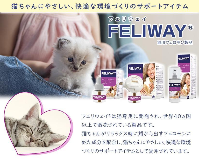 猫ちゃんにやさしい、快適な環境づくりのサポートアイテムFELIWAY