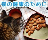 猫の健康のために。猫のサプリメントはどうなの?