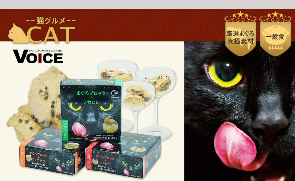 CAT--猫グルメ--